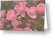 Pink Roses Greeting Card by Paula Sharlea