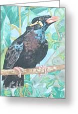 Pio  Xvi Greeting Card by Arte Ivanna