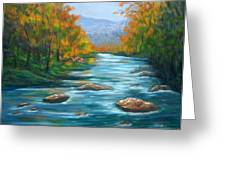 Pisgah Forest 1 Greeting Card by Sandy Hemmer