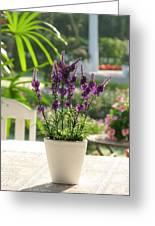 Plastic Lavender Flowers  Greeting Card by Nawarat Namphon