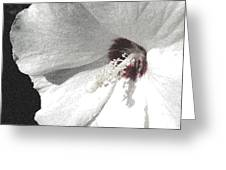 Pointillized Althea Flower Greeting Card by Renee Trenholm