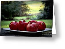 Pomegranates On White Platter 3 Greeting Card by Tanya  Searcy