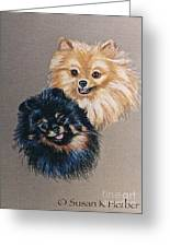 Pomeranian Pair Greeting Card by Susan Herber