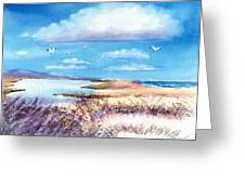 Pond At South Cape Beach Greeting Card by Joseph Gallant