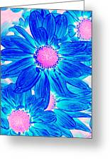 Pop Art Daisies 10 Greeting Card by Amy Vangsgard