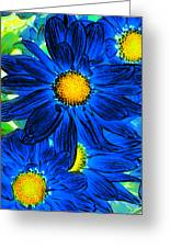 Pop Art Daisies 15 Greeting Card by Amy Vangsgard