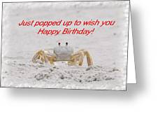 Popped In To Wish You Happy Birthday Greeting Card by Judy Hall-Folde