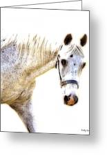 Portrait Of A Horse Series II Greeting Card by Kathy Jennings