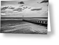 Potobello Beach And Drifting Sands Greeting Card by John Farnan
