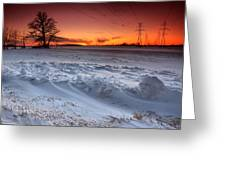 Powerlines In Winter Greeting Card by Cale Best