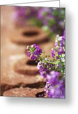 Pretty Flowers Greeting Card by Patty Malajak