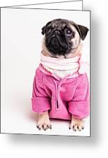Pretty In Pink Greeting Card by Edward Fielding