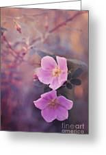 Prickly Rose Greeting Card by Priska Wettstein