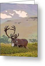 Profile Of A Bull Caribou- Abstract Greeting Card by Tim Grams
