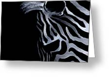 Profile Of Zebra Greeting Card by Natasha Denger