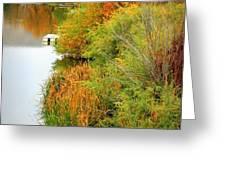 Prosser Autumn Docks Greeting Card by Carol Groenen