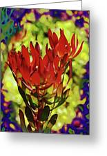 Protea Flower 4 Greeting Card by Xueling Zou