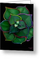 Psychedelic Succulent Greeting Card by Tanya Van Gorder