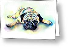 Pug Laying Flat Greeting Card by Christy  Freeman