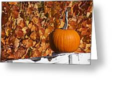 Pumpkin on white fence post Greeting Card by Garry Gay