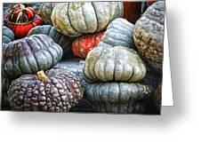 Pumpkin Pile II Greeting Card by Joan Carroll