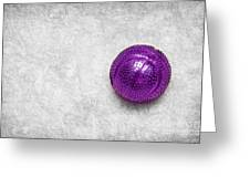 Purple Ball Cat Toy Greeting Card by Andee Design