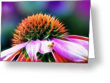 Purple Coneflower Delight Greeting Card by Bill Tiepelman