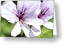 Purple Geranium Greeting Card by Artist and Photographer Laura Wrede