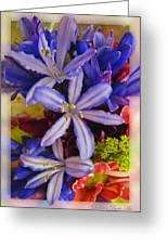 Purple Stars Greeting Card by Debbie Portwood
