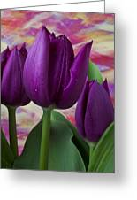 Purple Tulips Greeting Card by Garry Gay