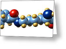 Pyrrolysine, Molecular Model Greeting Card by Dr Mark J. Winter
