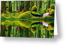 Queen Charlotte Island Swamp Greeting Card by David Nunuk
