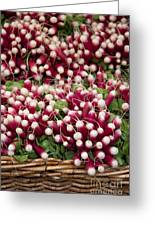 Radishes In A Basket Greeting Card by Jane Rix