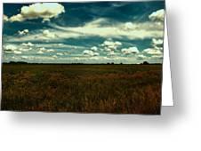 Raging Midnight Field Greeting Card by Bill Tiepelman