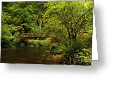 Rain Forest Bridge Greeting Card by Adam Jewell