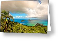 Rain In The Tropics Greeting Card by Keith Allen