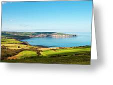 Ravenscar1 Greeting Card by Svetlana Sewell