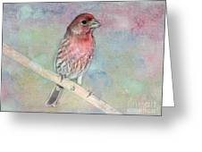 Ready To Sing My Song Greeting Card by Betty LaRue