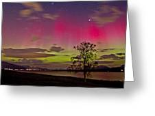 Red And Green Greeting Card by Frank Olsen