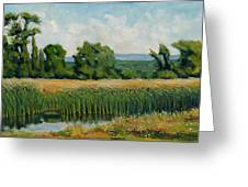 Red Cattails On Zion Greeting Card by Robert James Hacunda