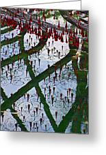 Red Crystal Refletcion Greeting Card by Garry Gay