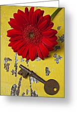 Red Daisy And Old Key Greeting Card by Garry Gay
