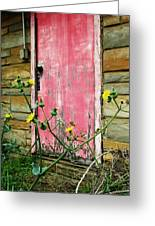 Red Door And Yellow Flowers Greeting Card by Todd Sherlock
