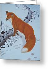 Red Fox In Snow Greeting Card by Melinda Fox