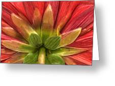Red Green Greeting Card by Al Hurley