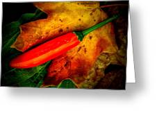 Red Hot Chili Pepper Greeting Card by Chris Berry