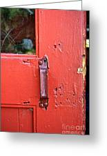 Red Of Course Greeting Card by Gwyn Newcombe