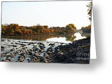 Red River Fall Of The Year Greeting Card by Steve Augustin
