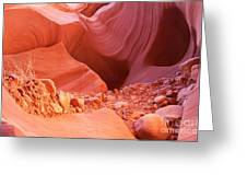 Red Rock Gems Greeting Card by Bob and Nancy Kendrick