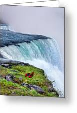 Red Shoes Left By The Falls Greeting Card by Jill Battaglia